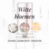 Tap Parfum LA 137 TAPPARFUM - Fles met verstuiver 50ML