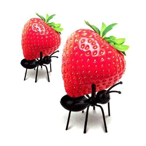 Kikkerland - party picks mieren