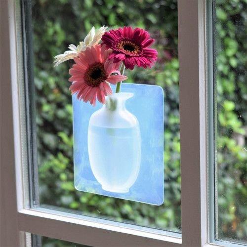 Invotis - magic window vase