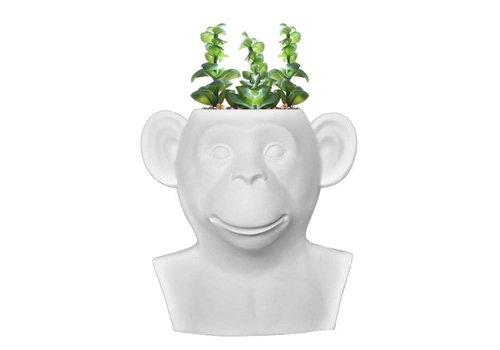 Invotis Invotis - monkey vase