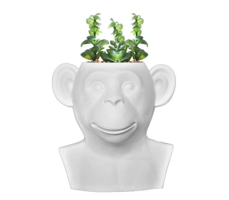 Invotis - monkey vase