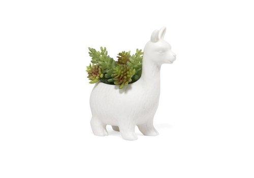 Kikkerland Kikkerland - plantenpot - lloyd de lama