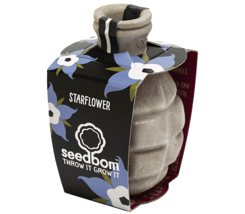 Seedbom - starflower
