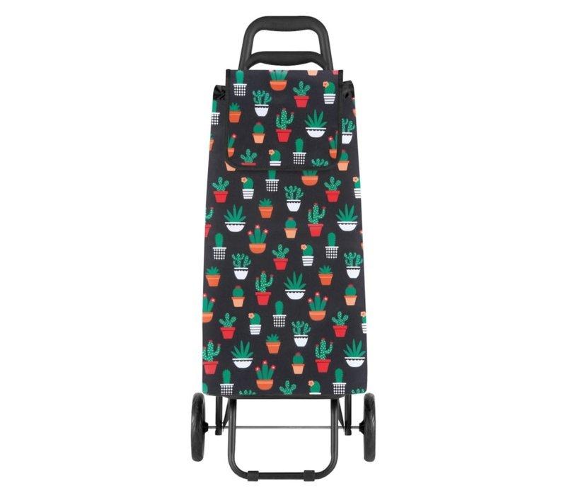 Derriere la porte - trolley - cactus
