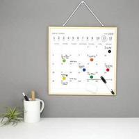 Kikkerland - whiteboard - kalender
