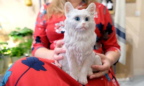 Kattendag | De 11 mooiste kado's voor kattenliefhebbers