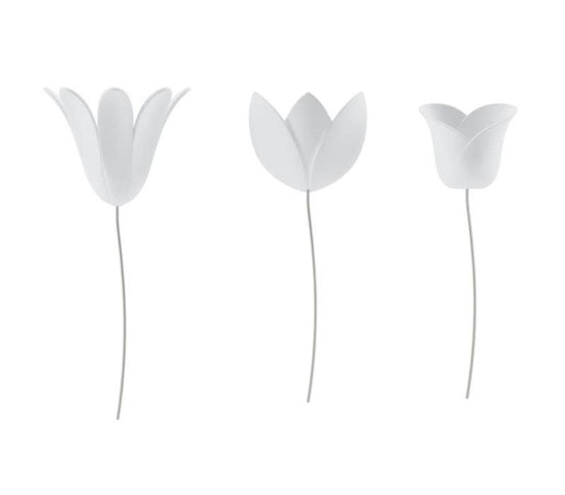 Umbra - bloomer - wit