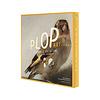 Plop Painted amsterdam - plop-art - the goldfinch