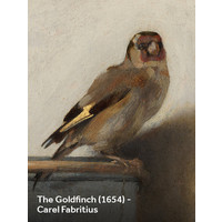 Painted amsterdam - plop-art - the goldfinch