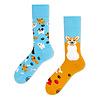 Many mornings Many mornings - sokken - playful dog