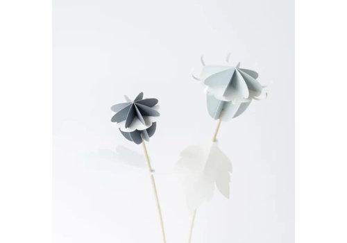 De bloemenier De bloemenier - diy paper flower - stille dopkoon