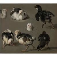 Painted amsterdam - sokken - d'hondecoeter