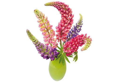 Flatflowers Flat flowers - raamsticker - q - lupine