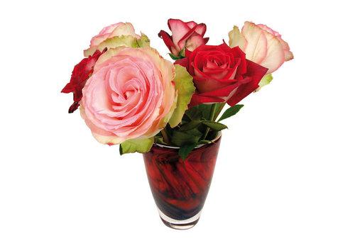 Flatflowers Flat flowers - raamsticker - g - roses