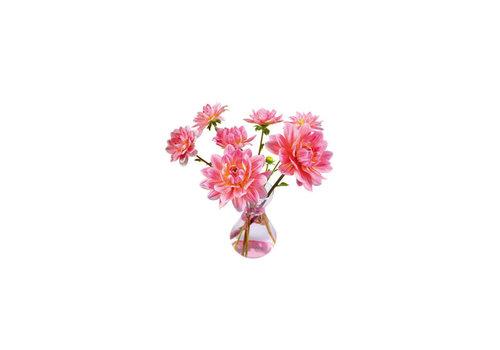 Flatflowers Flat flowers - ansichtkaart raamsticker - 005 - dahlia vase