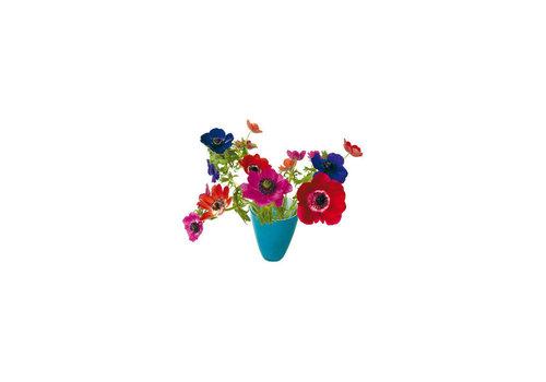 Flatflowers Flat flowers - ansichtkaart raamsticker - 004 - anemone blue