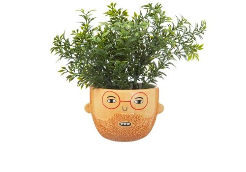 Sass & Belle Sass & Belle - mini planter - ross