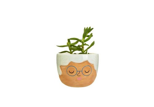 Sass & Belle Sass & Belle - mini planter - rose