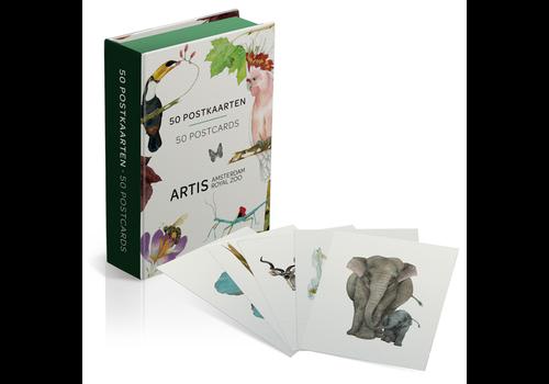 Mtd Mtday - postkaartbox - artis prenten