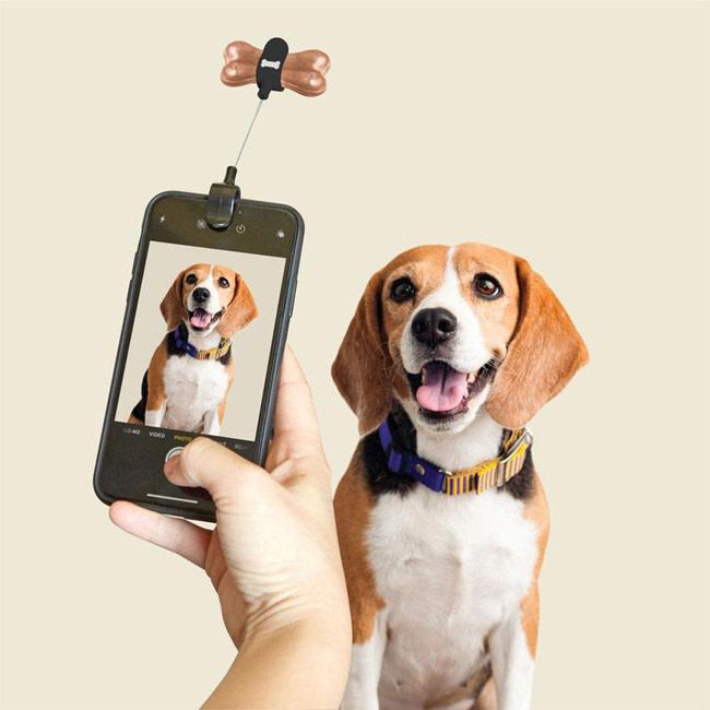 https://cdn.webshopapp.com/shops/254725/files/324538073/dig01-dog-treat-selfie-clip-action-800x800.jpg