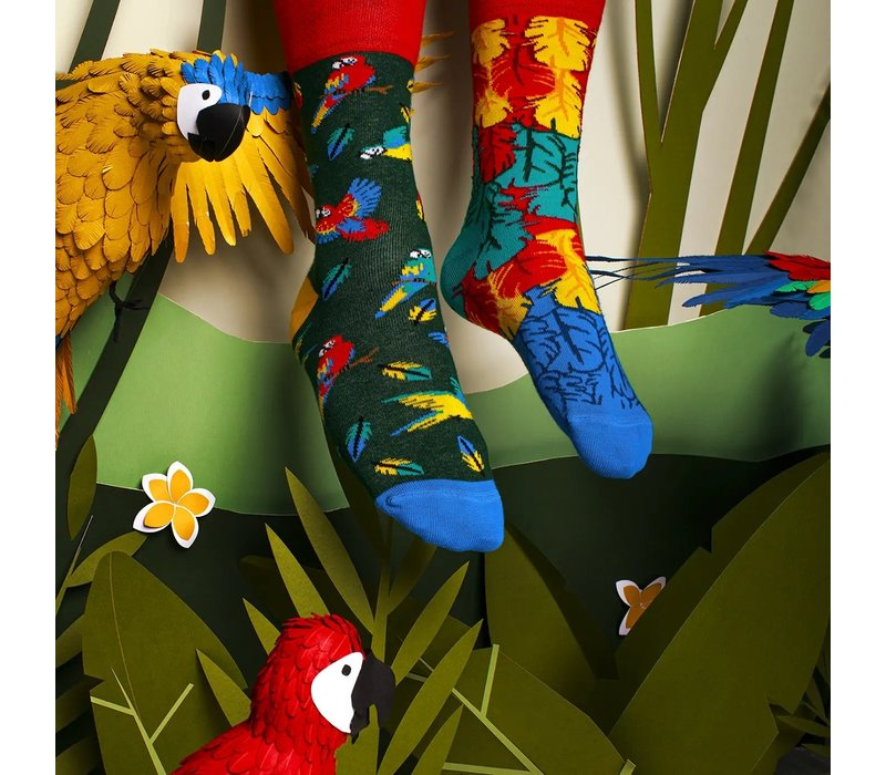 Many mornings - sokken - paradise parrot