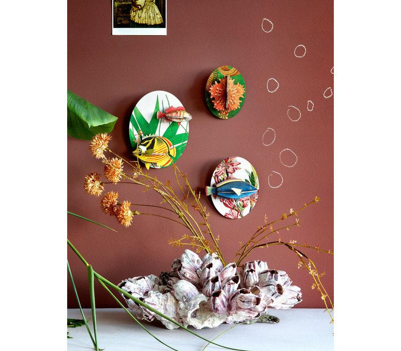 Studio roof - muurdecoratie - collectors box fishes (vol 2)