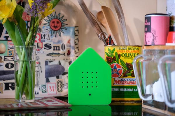 groene Zwitserbox huisje met vogelgeluiden