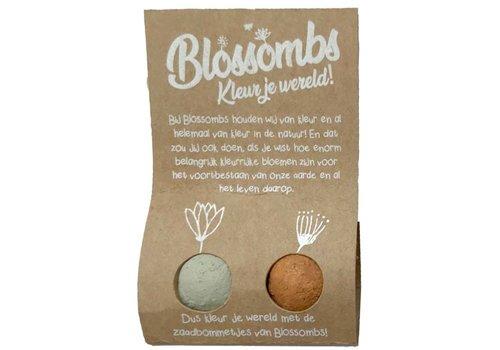 Blossombs Blossombs - weggeefcadeautje (2 bommetjes)