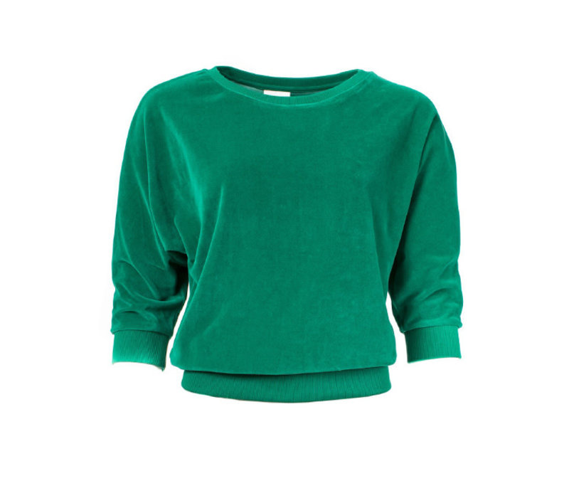 Froy & Dind - sweater sybille - green velour