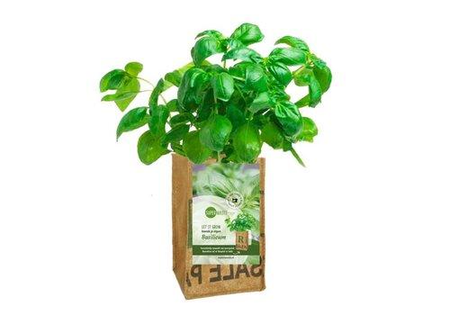 Superwaste Superwaste - let it grow bag - basilicum