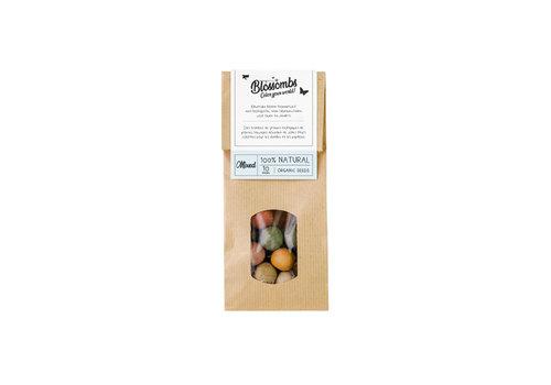 Blossombs Blossombs - geschenkzakje (10 bommetjes)