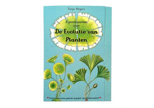 Tanja Hilgers Tanja hilgers - de evolutie van planten - set van 8 kaarten
