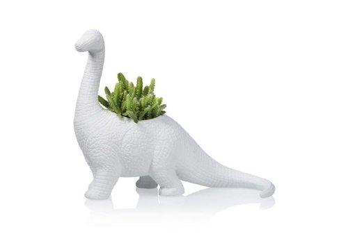 Bitten Bitten - bloempot - brachiosaurus