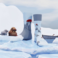 Many mornings - sokken - the walrus