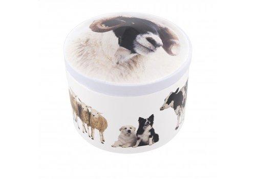 Gardiners of Scotland Farm Animals Tin vanilla 200g 12bl