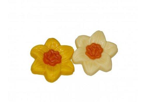 Narcissen geel/wit 10g 2,5kg