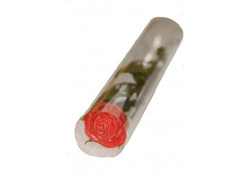 Rozen chocolade rood trsp.koker 12st