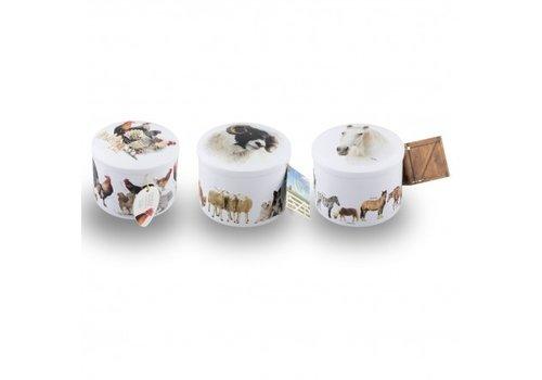 Gardiners Horse-Animals -HenChicken Tin vanilla ass 200g 12bl