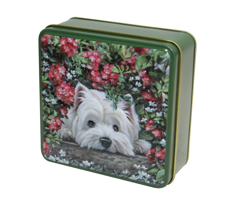 Embossed Hiding Westie Dog Tin 100g 12st