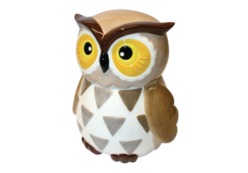 Grandma Wild's Ceramic Barney Barn Owl 200g 6st