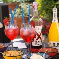 Santero 958 mix13% 1ltr 6fl