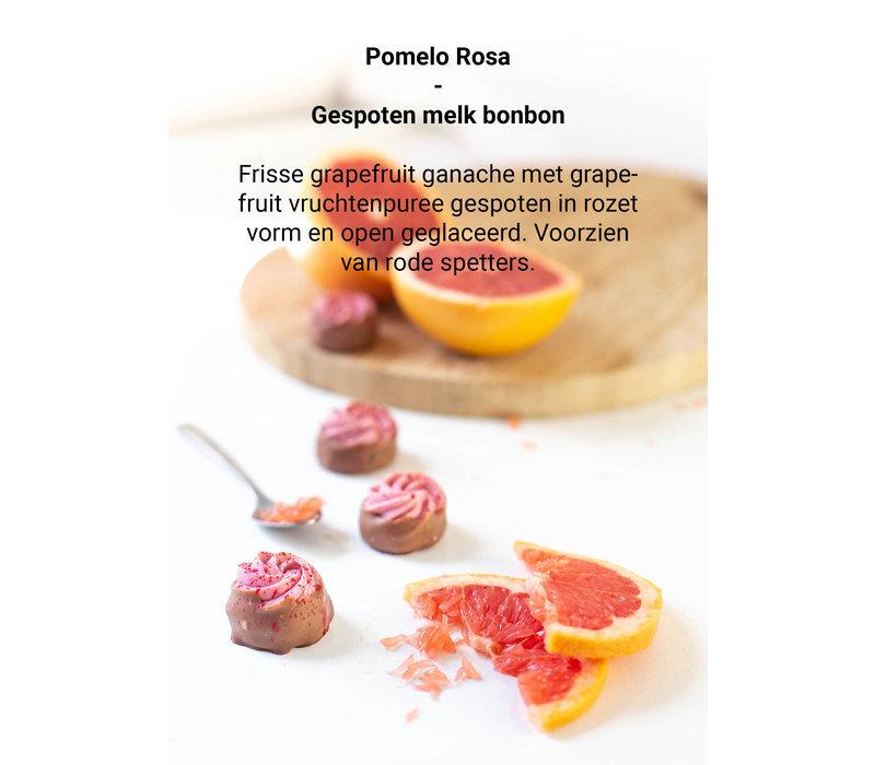 BB Pomelo Rosa nr.54 NIEUW