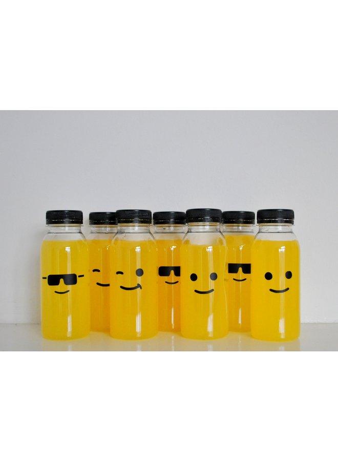 Flesjes met witte of zwarte dop (5x)