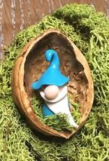 Sveja Miniatur-Wicht/Zwerg türkis Walnuss