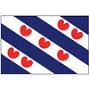 Talamex Talamex vlaggen Nederland: Provincievlag Friesland 20x30