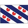 Talamex Talamex vlaggen Nederland: Provincievlag Friesland 70x100