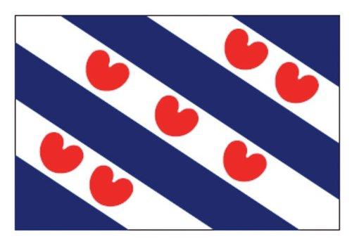 Talamex Talamex vlaggen Nederland: Provincievlag Friesland 200x300