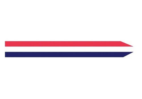 Talamex Talamex vlaggen Nederland: Wimpel Nederland 250