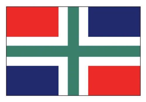 Talamex Talamex vlaggen Nederland: Provincievlag Groningen 20x30