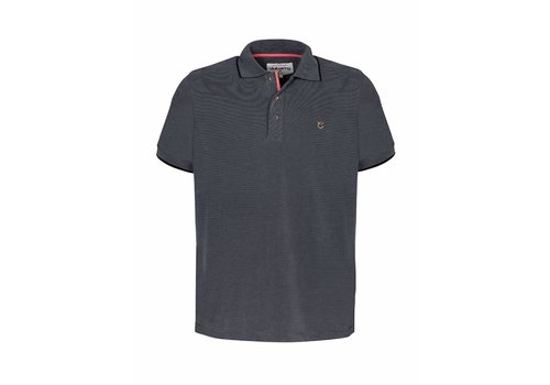 Dubarry DUBARRY GLENGARRIF MODAL POLO SHIRT GRAPHITE